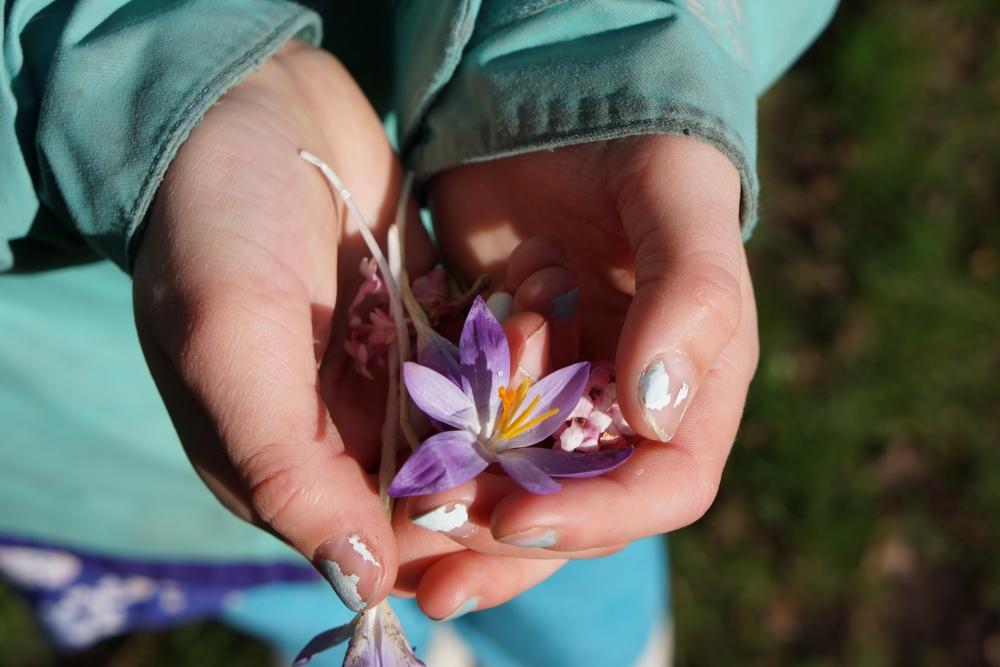 cora-bouquet