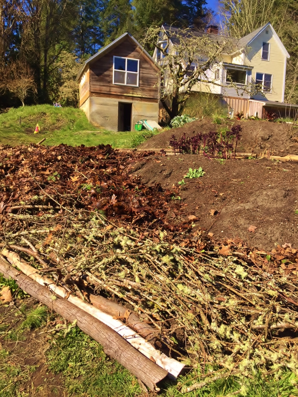 Building our farm–one garden bed at a time. – Eating Buckets